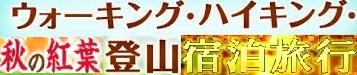 c0119160_15484628.jpg
