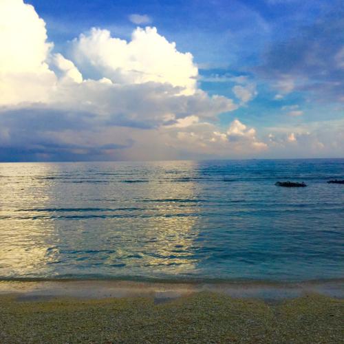 インドネシアの旅⭐️ギリ島の朝_c0151965_00433722.jpg