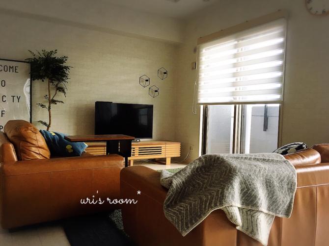 リビングに冬用ブランケット!それから息子の部屋がますます酷い件。_a0341288_00581738.jpg