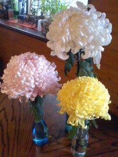 この菊が/Chrysanthemum_d0090888_1112798.jpg