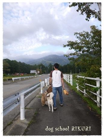 家族+下宿犬で旅行に行ってきました♪ その②_a0284100_11595699.jpg
