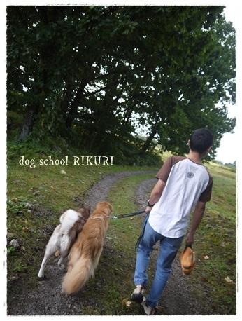 家族+下宿犬で旅行に行ってきました♪ その②_a0284100_12054389.jpg