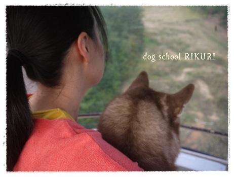 家族+下宿犬で旅行に行ってきました♪ その③_a0284100_19331896.jpg