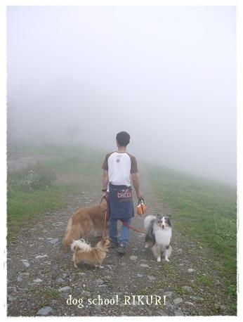 家族+下宿犬で旅行に行ってきました♪ その③_a0284100_19491541.jpg
