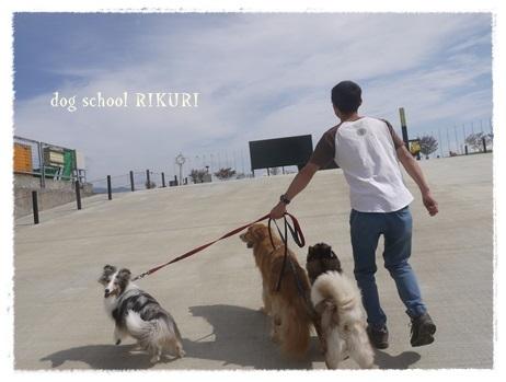 家族+下宿犬で旅行に行ってきました♪ その③_a0284100_20113305.jpg