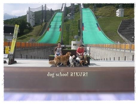 家族+下宿犬で旅行に行ってきました♪ その③_a0284100_20123641.jpg