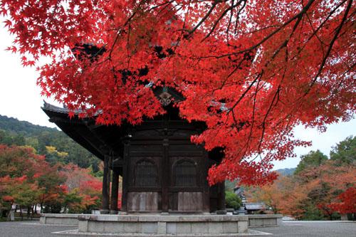 紅葉探訪6 南禅寺周遊_e0048413_19533434.jpg
