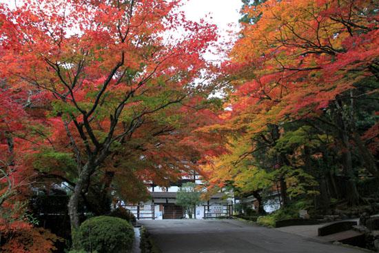 紅葉探訪6 南禅寺周遊_e0048413_19534720.jpg