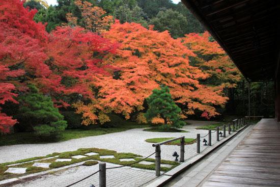 紅葉探訪6 南禅寺周遊_e0048413_19544467.jpg