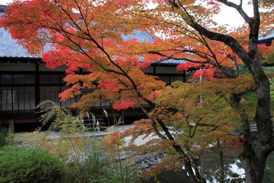 紅葉探訪6 南禅寺周遊_e0048413_19551772.jpg