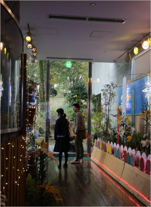とっとり花回廊 ④ _a0256349_2395777.jpg
