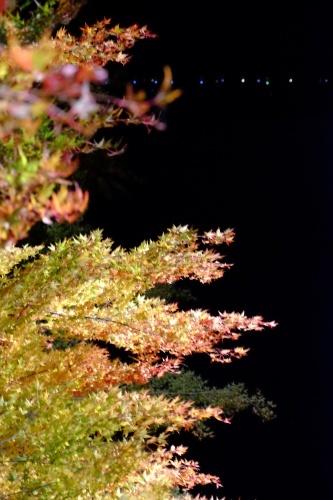 夕焼けの渚   紅葉祭_a0335867_06531184.jpg