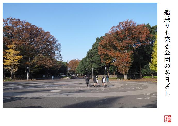 代々木公園の紅葉_a0248481_19530361.jpg
