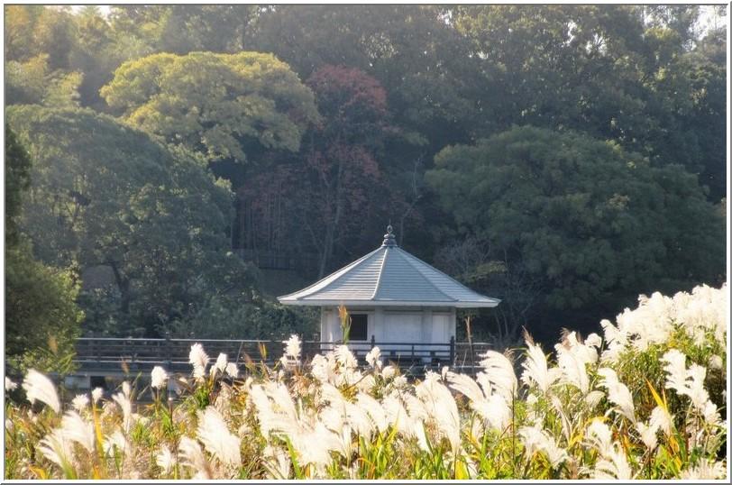 小春日和の山田池公園_b0104092_2363076.jpg