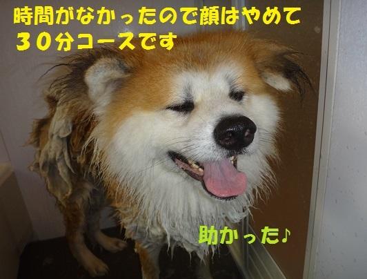 f0121712_01344483.jpg