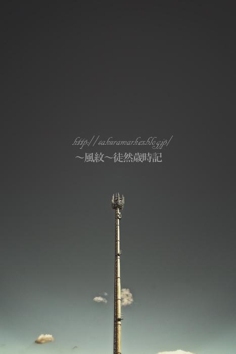 冬空の塔。_f0235723_207314.jpg