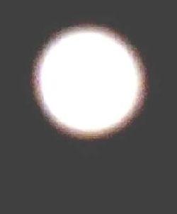 b0131046_111528.jpg