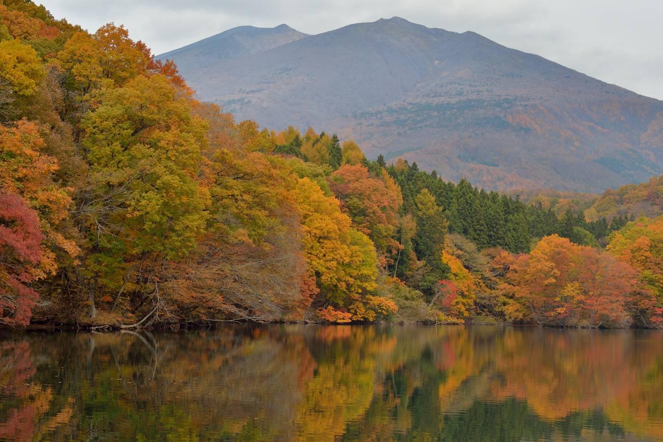 湖の紅葉 11/8日撮影_b0223668_840793.jpg