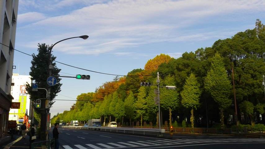都内の紅葉も・・・・。_d0062076_15465716.jpg