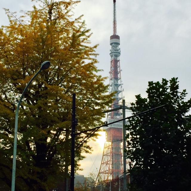 東京タワー、お散歩_c0352090_17035263.jpg