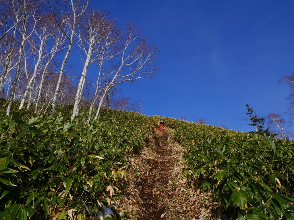 イチャンコッペ山、11月14日_f0138096_22323065.jpg