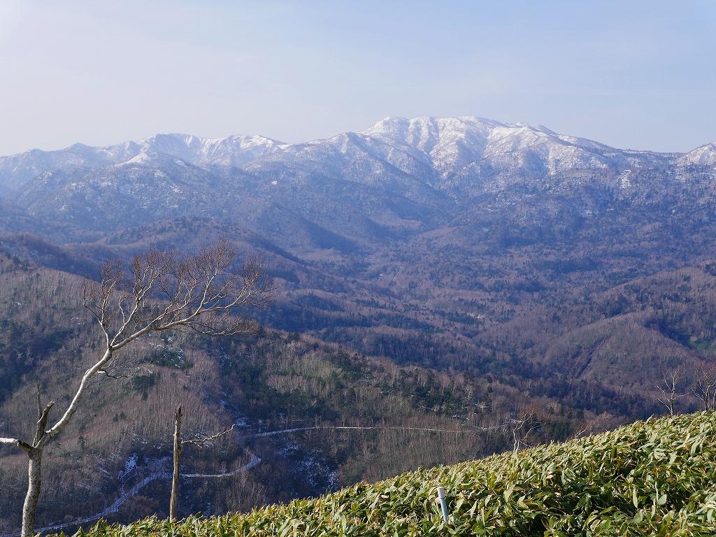 イチャンコッペ山、11月14日_f0138096_22331256.jpg