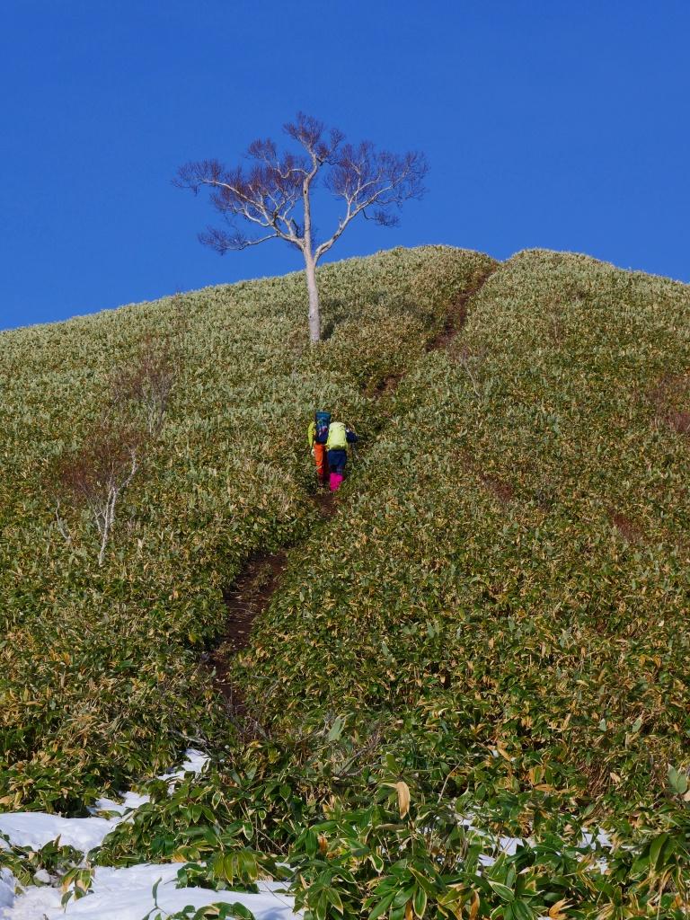 イチャンコッペ山、11月14日_f0138096_2233276.jpg