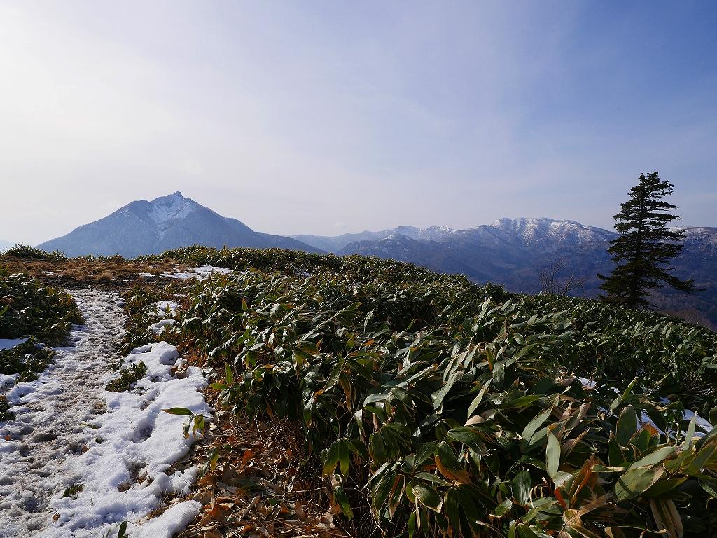イチャンコッペ山、11月14日_f0138096_2234766.jpg