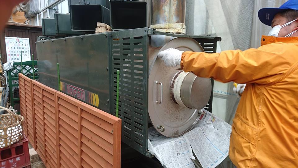 ジャボチカバの温度管理_b0028299_19175730.jpg