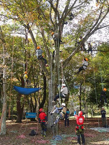 木と戯れ、秋を満喫した極上キャンプ!_c0137404_218327.jpg