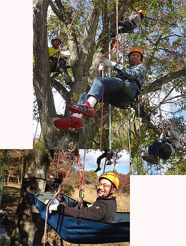 木と戯れ、秋を満喫した極上キャンプ!_c0137404_2184375.jpg