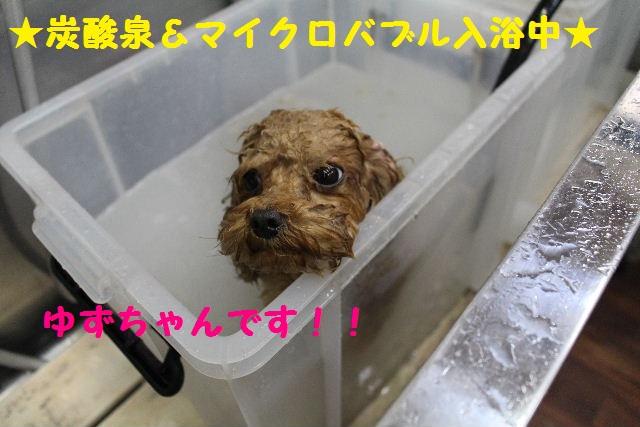 映画連発~!!_b0130018_23424696.jpg