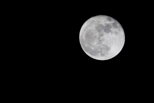 スーパームーンの翌日の月。_f0348831_07574280.jpg