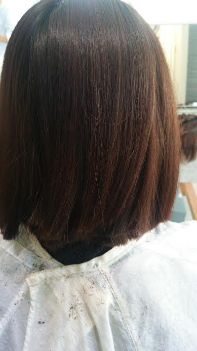 髪の毛の寄付!!_e0309150_1715937.jpg