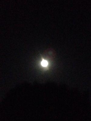 月の仮面と太陽の仮面***_e0290872_22590600.jpg