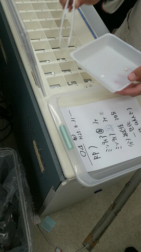 中学校職場体験 薬局 受入_d0092901_22255053.jpg