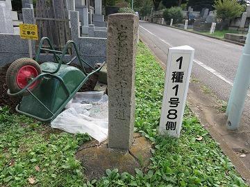 岩瀬忠震(雑司ケ谷霊園に眠る有名人②)_c0187004_10335859.jpg
