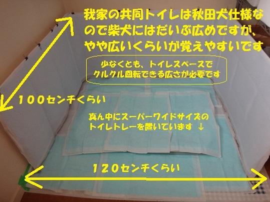 f0121712_14242575.jpg
