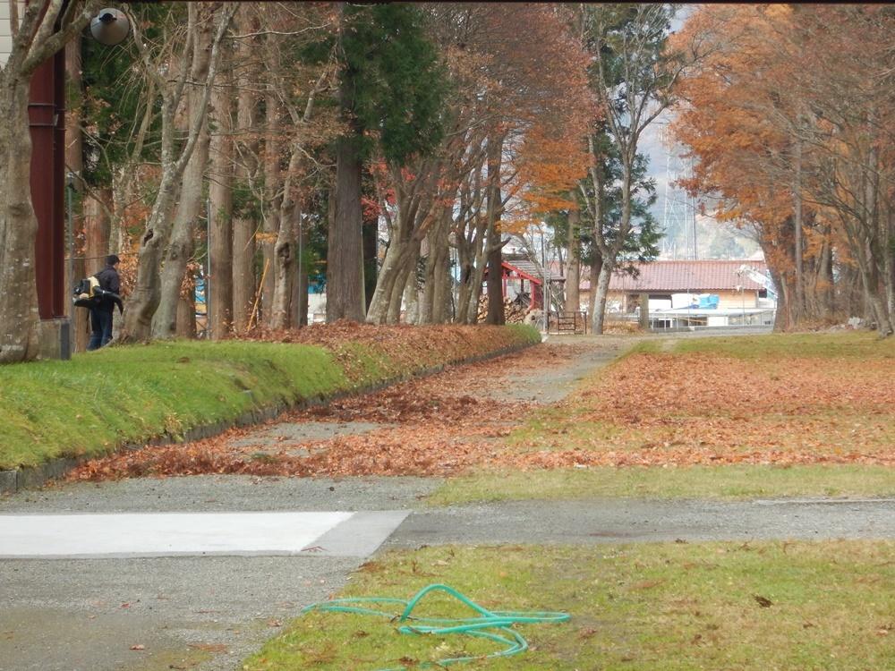 落ち葉掃除と焼却_c0111229_17450762.jpg