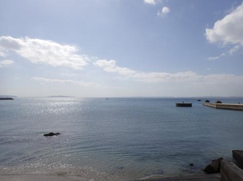 11月16日レッドビーチの季節がやって来た!!_c0070933_22225293.jpg
