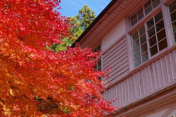 ひさびさに秋を満喫_d0227044_1117262.jpg