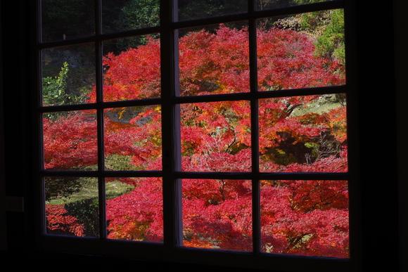 ひさびさに秋を満喫_d0227044_11183473.jpg
