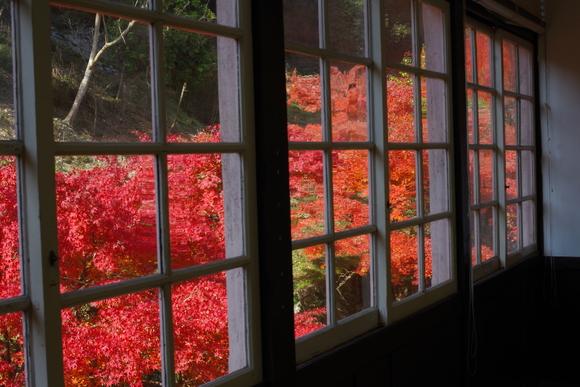ひさびさに秋を満喫_d0227044_11203698.jpg