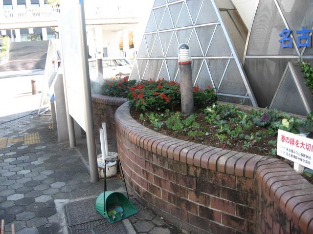 ガーデンふ頭総合案内所前花壇の植替えH28.11.16_d0338682_15253243.jpg