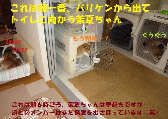 f0121712_08462366.jpg