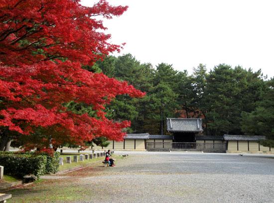 紅葉探訪10 京都御苑と上賀茂神社_e0048413_20321319.jpg