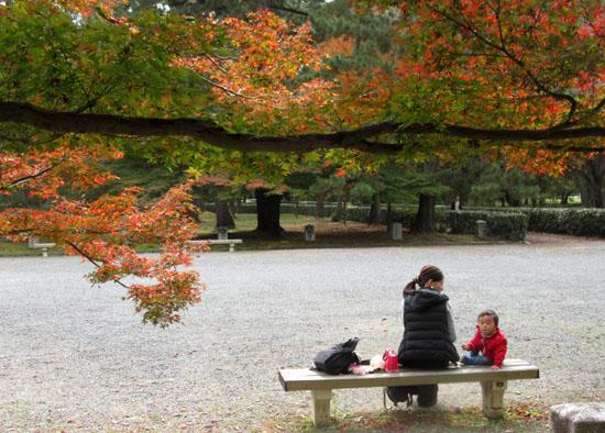 紅葉探訪10 京都御苑と上賀茂神社_e0048413_2032376.jpg