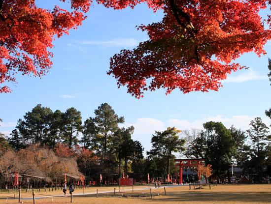 紅葉探訪10 京都御苑と上賀茂神社_e0048413_20324258.jpg