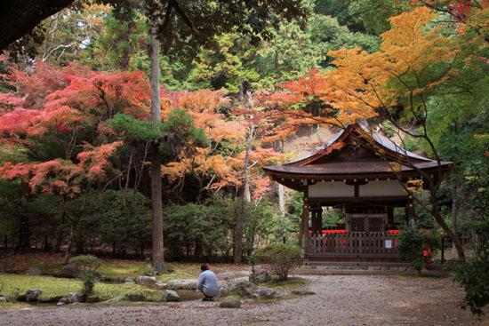 紅葉探訪10 京都御苑と上賀茂神社_e0048413_20333310.jpg