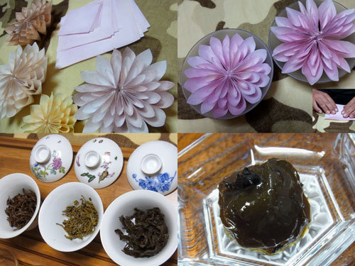 akpearl.exblog.jp